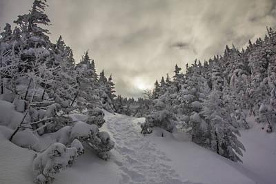 Winter On The Ammo Trail Art Print