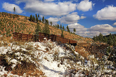 Photograph - Winter On The Bizz Johnson Trail by James Eddy