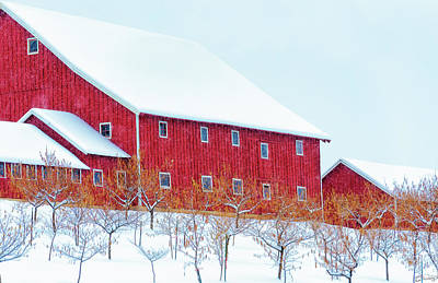 Photograph - Winter On The Farm by Dee Browning
