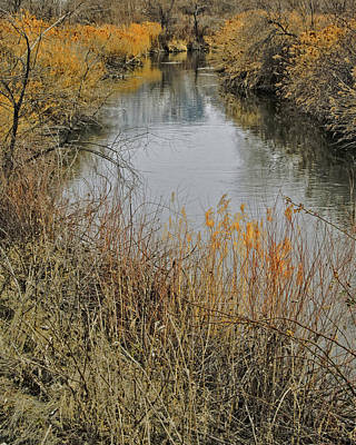 River Jordan Photograph - Winter On The Jordan River by David King