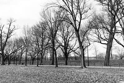 Photograph - Winter On The Mall by Bill Howard