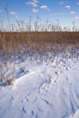 Winter On The Prairie Original