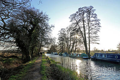 Photograph - Winter On The River Wey At Send Surrey by Julia Gavin