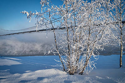 Photograph - Winter On The Tanana - Pipeline In The Fog by Cathy Mahnke