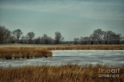 Photograph - Winter On The Water by Tamera James