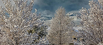 Photograph - Winter Panoramic by Nancy Marie Ricketts