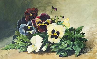 Pansy Painting - Winter Pansies by Louis Bombled