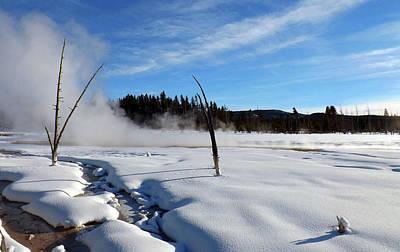 Photograph - Winter Paradise by C Sitton
