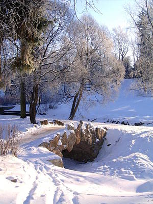 Photograph - Winter Park Landscape by Masha Batkova