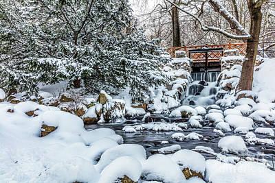 Photograph - Winter Park. Park Oliwski, Gdansk, Poland by Michal Bednarek