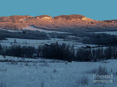 Photograph - Winter Pastoral by Anne Havard