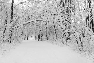 Photograph - Winter Path by Chris Bordeleau