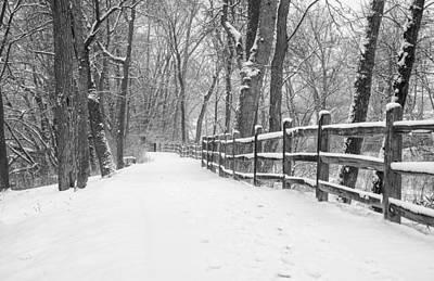 Winter Path Art Print by Jeff Klingler