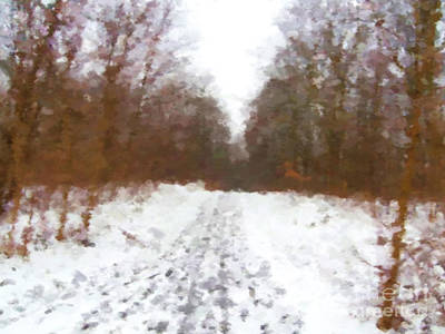 Winter Path Art Print by Miroslav Nemecek
