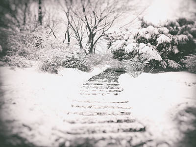 Central Park Photograph - Winter Path by Vivienne Gucwa