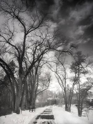 Photograph - Winter Pathways by Tara Turner