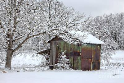 Barns In Snow Photograph - Winter Patina by Benanne Stiens