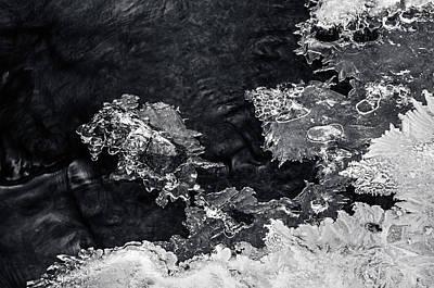 Photograph - Winter Patterns 2. Frozen Nature by Jenny Rainbow