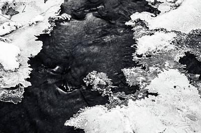 Photograph - Winter Patterns 3. Frozen Nature by Jenny Rainbow