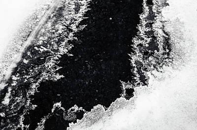 Photograph - Winter Patterns 5. Frozen Nature by Jenny Rainbow