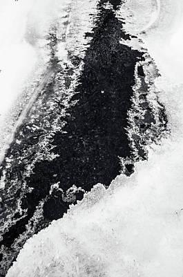 Photograph - Winter Patterns 6. Frozen Nature by Jenny Rainbow
