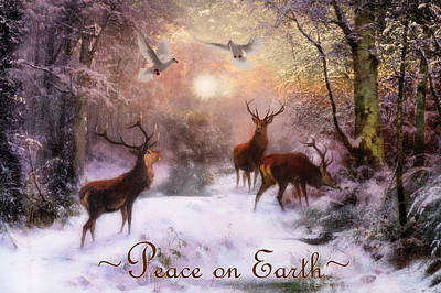 Photograph - Winter Peace by Debra and Dave Vanderlaan