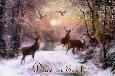 Photograph - Winter Peace by Debra and Dave Vanderlaan