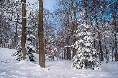 Winter Perfection Art Print by Jenny Rainbow