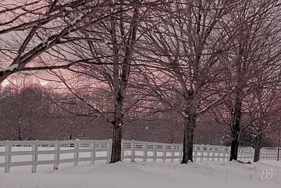 Photograph - Winter Pink by Geri Glavis