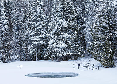 Photograph - Winter Pond Scenic by Alan L Graham