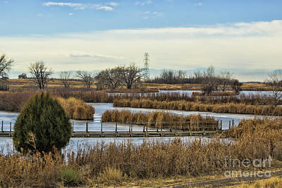 Photograph - Winter Ponds by Steven Parker