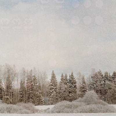 Photograph - Winter Prelude V by Olivier De Rycke