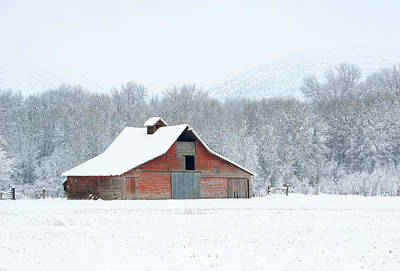 Winter Red Barn Art Print