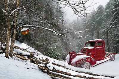 Photograph - Winter Reds by Debra and Dave Vanderlaan
