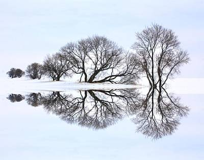 Photograph - Winter Reflection  by David Matthews