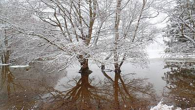 Photograph - Winter Reflection In Bow by Karen Molenaar Terrell