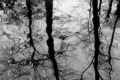 Photograph - Winter Reflection by Inge Riis McDonald
