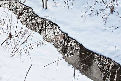 Photograph - Winter Reflections 2 by Tatiana Travelways