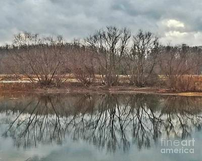 Photograph - Winter Reflections 2017 by Maria Urso
