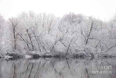 Photograph - Winter Reflections by Birgit Tyrrell