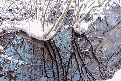 Photograph - Winter Reflections by Claudia M Photography