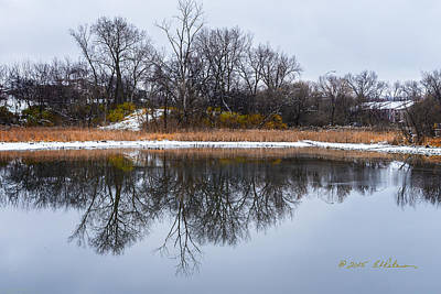 Moody Trees - Winter Reflections by Edward Peterson