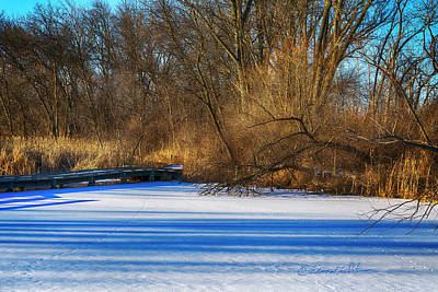 Photograph - Winter Refresh by Edward Peterson