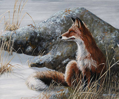 Red Fox Painting - Winter Respite by Rob Dreyer