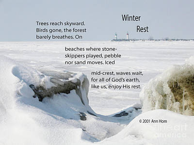Photograph - Winter Rest by Ann Horn