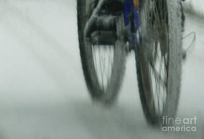 Photograph - Winter Ride by Linda Shafer