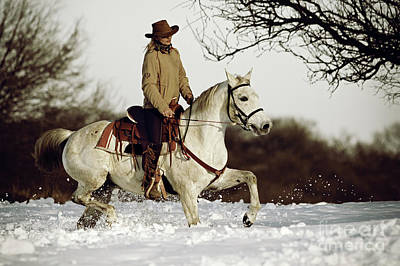 Photograph - Winter Ride On The White Horse by Dimitar Hristov