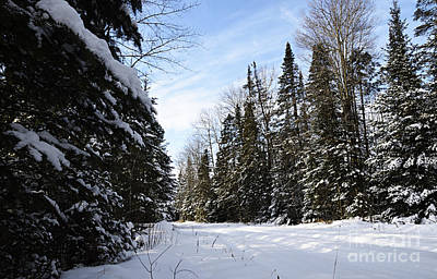 Photograph - Winter Road 2 by Larry Ricker