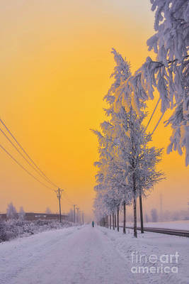 Hoarfrost Wall Art - Photograph - Winter Road 2 by Veikko Suikkanen