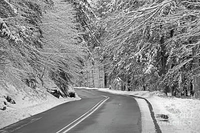 Photograph - Winter Road In The Forest by John Stephens